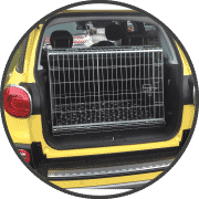 cage by car