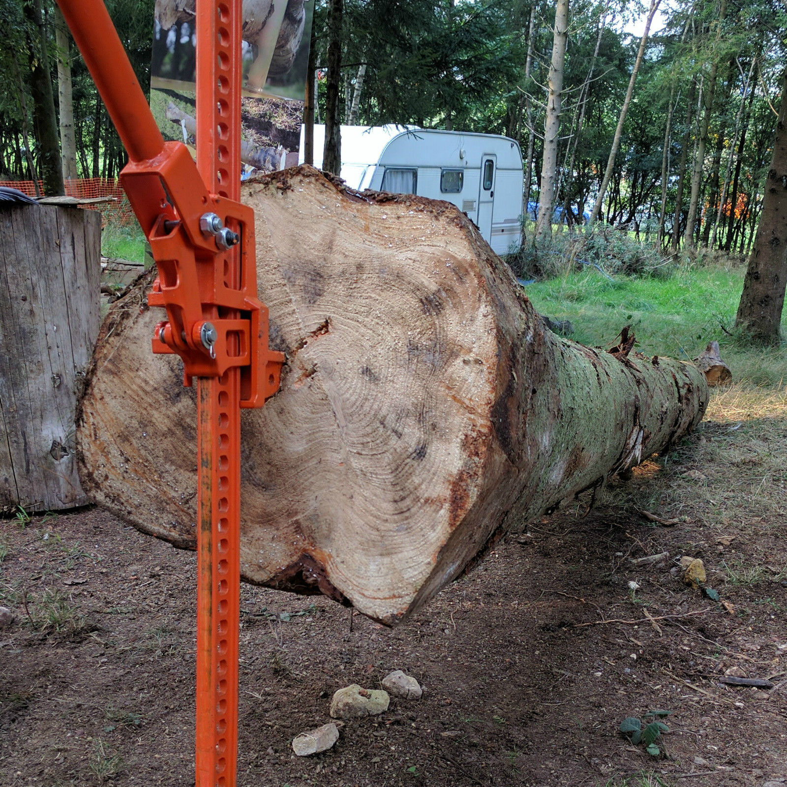 Timberjack Log Lifter Made in the USA Logging Felling Forestry Sawmills