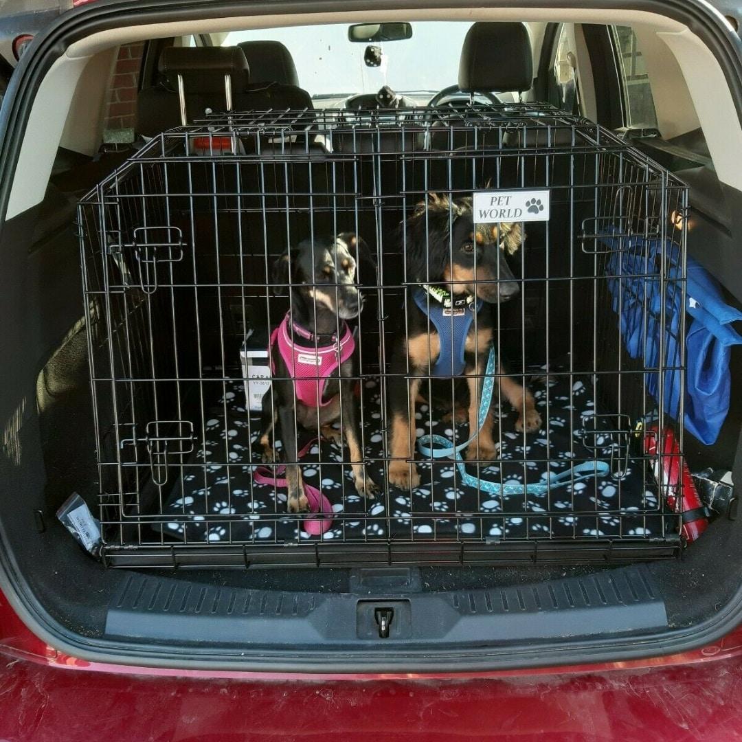 Pet World Ford Kuga 2008 Onward 4x4 Car Dog Cage Crate Pet ...