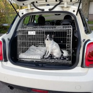 Mini One, Car Dog Cage, Pet Travel Crate for Mini