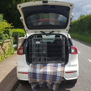 kia nero, pet cage, dog travel crate